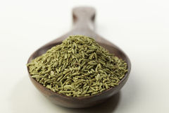 Indian spices-Aniseed. Royalty Free Stock Images