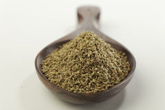 Indian spices-Bishop's weed. Royalty Free Stock Photo