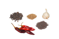 Indian Spices. Black pepper, Cumin, White Onion, black mustard seeds, Red chilli Isolated on white background royalty free stock photos
