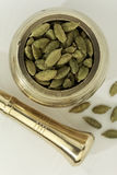Indian spices-Cardamom Stock Images