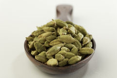 Indian spices-Cardamom. Royalty Free Stock Images