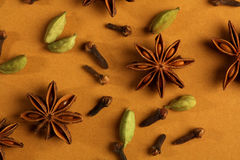 Indian spices - cinnamon, cloves, star anise Stock Photography