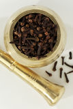 Indian spices-Clove Stock Photography