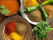 Indian spices and dip Royalty Free Stock Photography