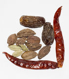 Indian spices with dry fruits Royalty Free Stock Photos