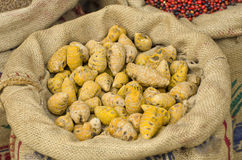 Indian spices ginger at  market in sack, Kerala state Stock Photo