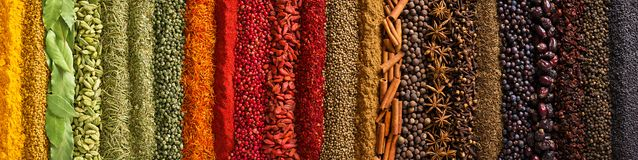 Panorama spices and herbs for food labels. Seasonings and flavors background stock images