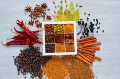 Indian spices and herbs in the box on the gray table: anise, fragrant pepper, cinnamon, nutmeg, bay leaves, paprika. Ingredients for tasty food. Top view of stock images