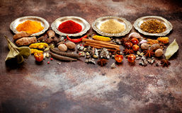 Indian spices and herbs on old rusty texture Royalty Free Stock Photography