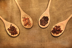 Indian spices in a ladle. Arrangement of spices in a ladle Stock Photos