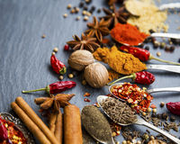 Indian spices and nutmeg closeup Stock Images