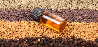 Indian spices and oil Royalty Free Stock Images