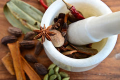 Indian spices. With Pestle or Mortar Stock Images
