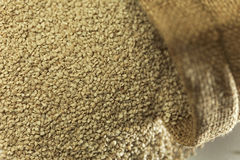 Indian spices-Sesame. Royalty Free Stock Images
