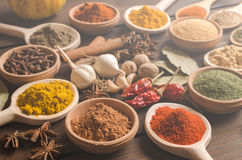 Indian spices on wooden table background Royalty Free Stock Photos
