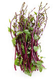 Indian spinach Stock Photo