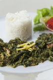 Indian spinach curry Royalty Free Stock Images
