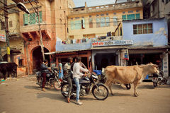 Indian street with grunge houses, driving motorcycles and walking cow Stock Images