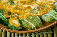 Indian stuffed  curry cabbage. With brown rice and vegetables - Bandh gobi ki rolls Royalty Free Stock Photo