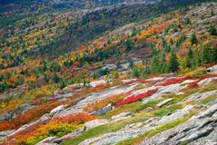 Indian summer, Acadia Park, Maine Royalty Free Stock Images