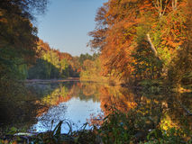 Indian summer in Berlin Royalty Free Stock Images