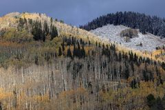 Indian summer in colorado Royalty Free Stock Photo