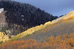Indian summer in colorado Royalty Free Stock Photography