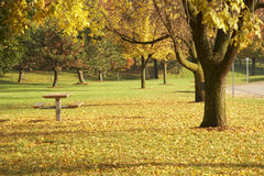 Indian summer is04 Stock Photo