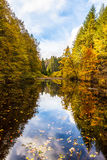 Indian Summer Lake. Indian Summer at the Pfalz royalty free stock image