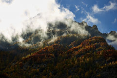 Indian summer in the mountains Royalty Free Stock Images