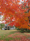 Indian summer new england stock photography