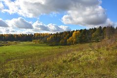 Indian summer. Russian open spaces. Royalty Free Stock Photo