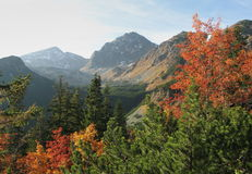Indian summer in Tatry in Slovakiy Stock Photos