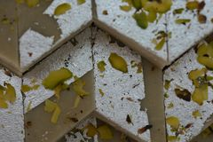 Indian Sweets Kaju Katli royalty free stock image
