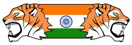 Indian tiger Stock Image
