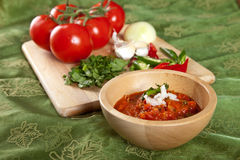 Indian tomato dip Royalty Free Stock Photo