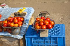 Indian tomatoes Royalty Free Stock Photos