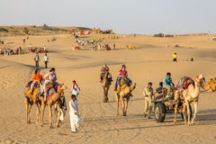Indian tourists  riding camels in Thar desert, Rajasthan, India. Jaisalmer, India - March 13, 2016: Indian tourists  riding camels in Thar desert, Rajasthan Stock Photography