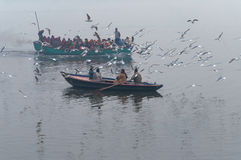 Indian tourists are surrounded by seagulls on boat on the river Ganges foggy morning. Varanasi Royalty Free Stock Photos