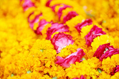 Indian traditional orange flowers garland Stock Images