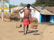 Indian tribal man Stock Images