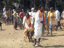 Indian tribal weeklly goats market Royalty Free Stock Image