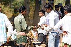 Indian tribal weeklly market. India, Orissa: transaction at the tribal weekly goats market. Orissa is one of the poorest states in India. The proportion of Stock Photography