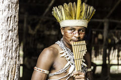 Indian tribe ritual in Amazon, Brazil Stock Images