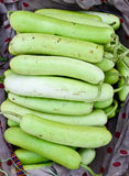 Indian vegetable-bottle gourd Stock Photos