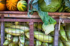 Indian vegetable market. (greengrocer's) are generated from European varieties of vegetables. Cabbages, marrows, pumpkins, onions, watermelons and other stock images