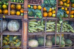 Indian vegetable market. (greengrocer's) are generated from European varieties of vegetables. Cabbages, marrows, pumpkins, onions, watermelons and other stock photo