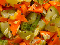 Indian vegetable medley Royalty Free Stock Image