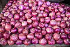 Indian vegetable-Onion Stock Images