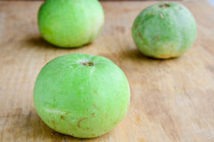 Indian vegetable-round gourd Royalty Free Stock Image